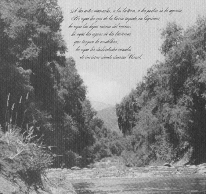 Sounds of Pain Poem